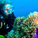 Tusa Dive - See the Great Barrier Reef