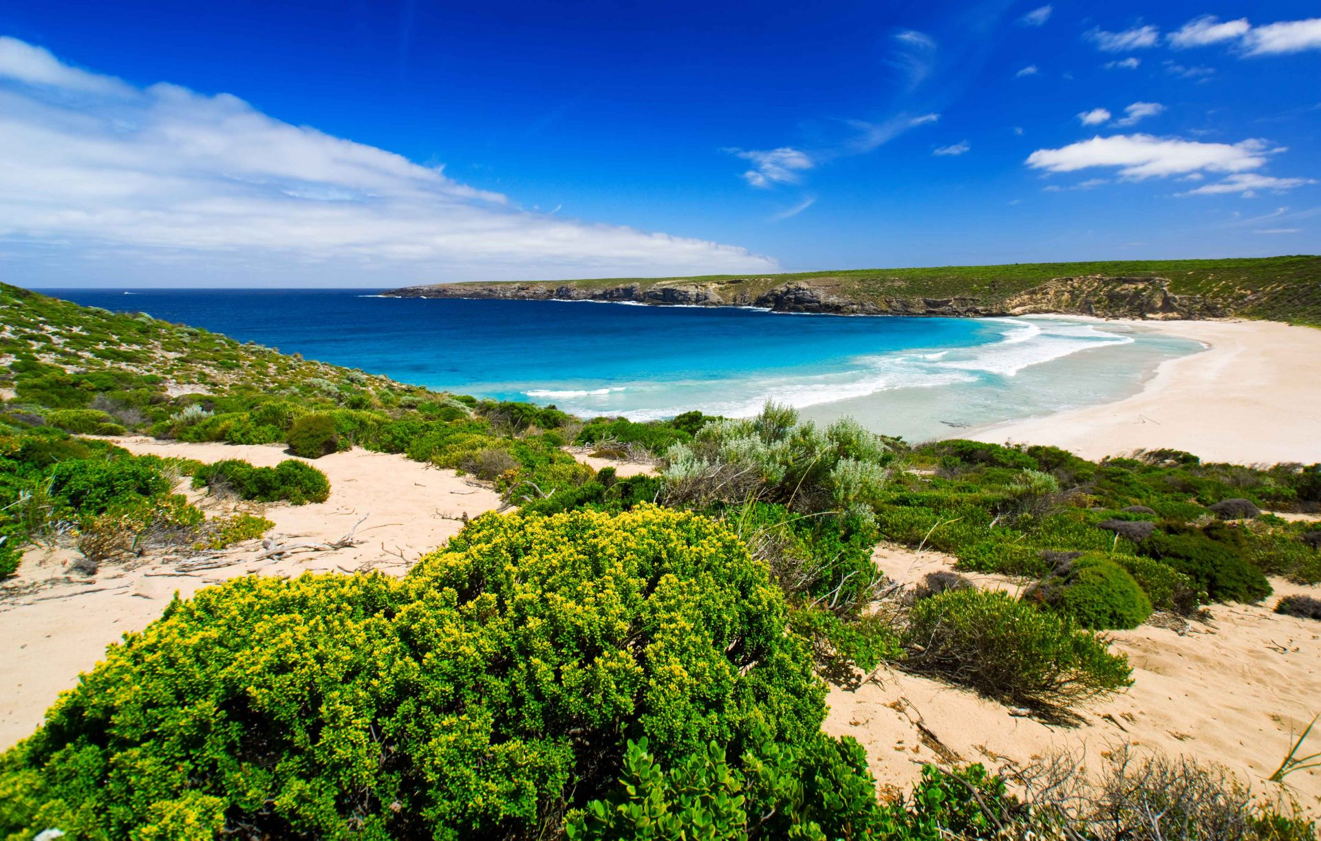 Travel to Australia - Kangaroo Island